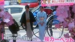 神カル2-桜カーペット.jpg
